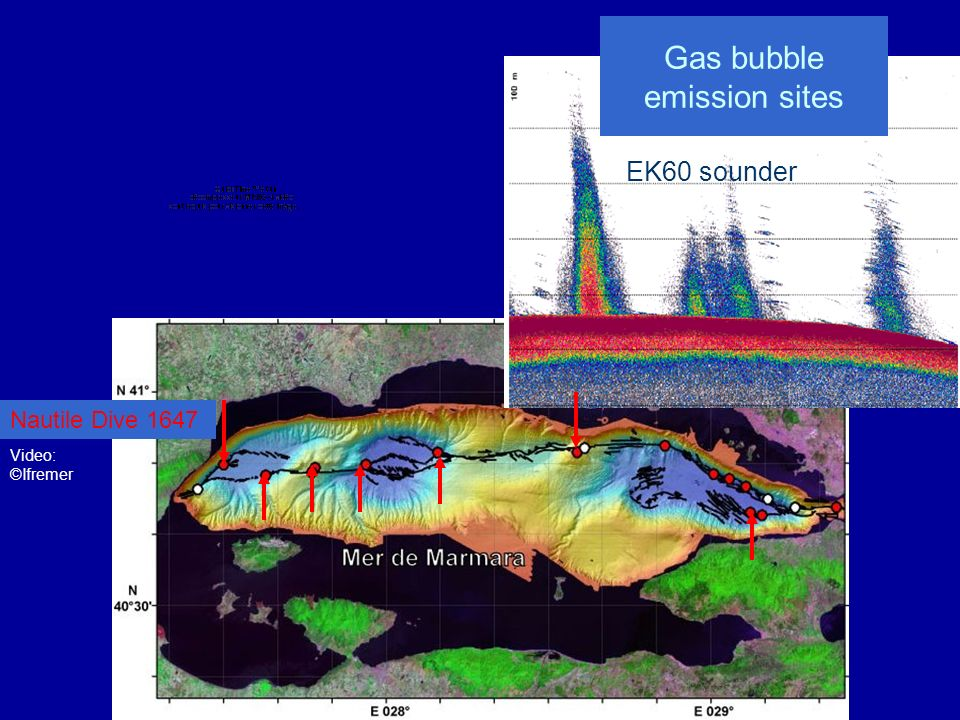 Gas bubble emission sites