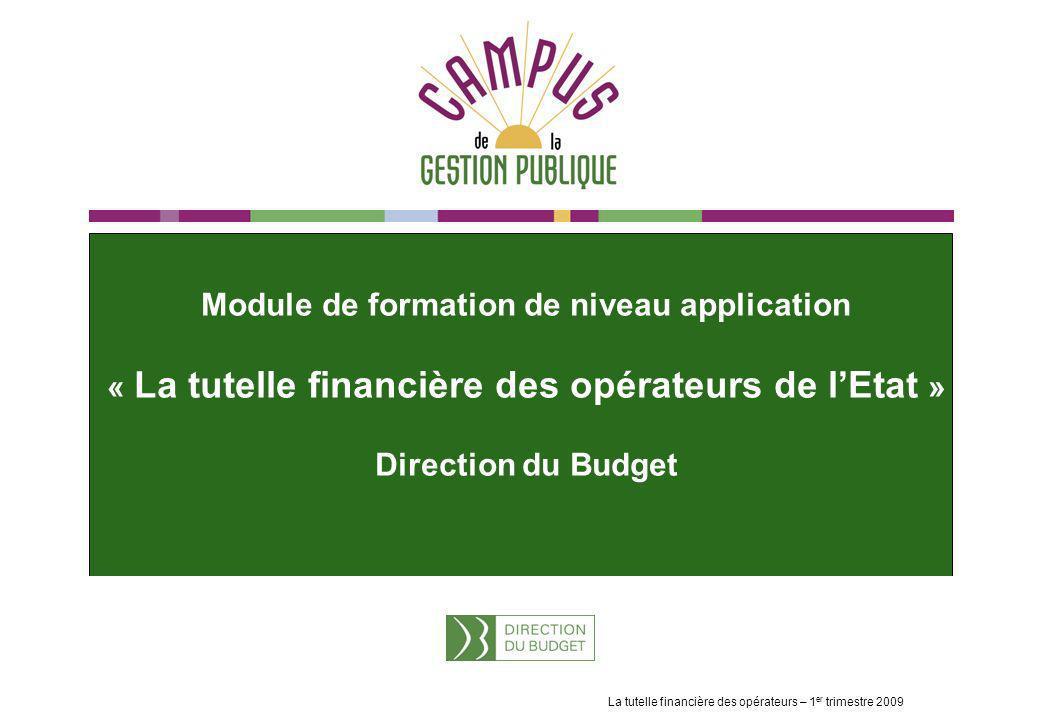 Module de formation de niveau application « La tutelle financière des opérateurs de l'Etat » Direction du Budget