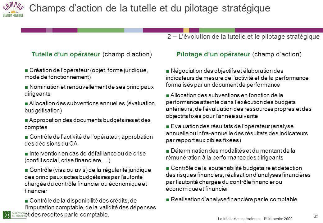 Champs d'action de la tutelle et du pilotage stratégique