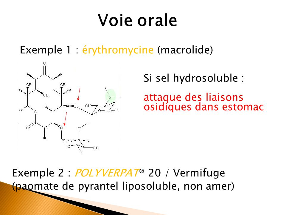 Voie orale Exemple 1 : érythromycine (macrolide) Si sel hydrosoluble :