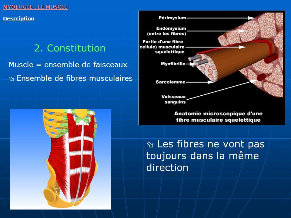  Les fibres ne vont pas toujours dans la même direction