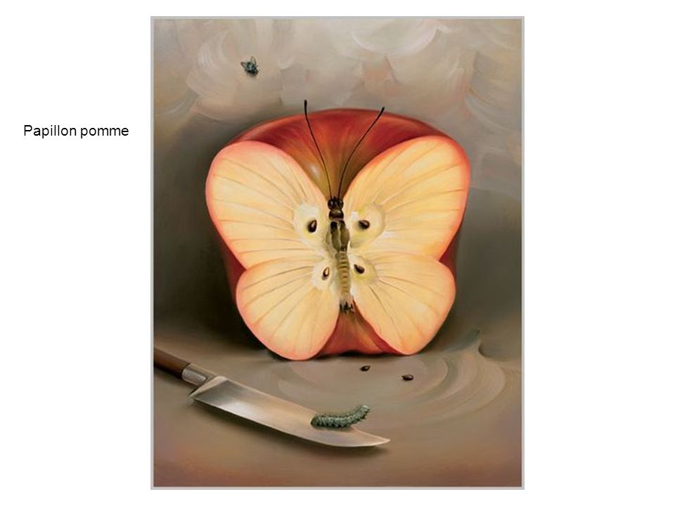 Papillon pomme
