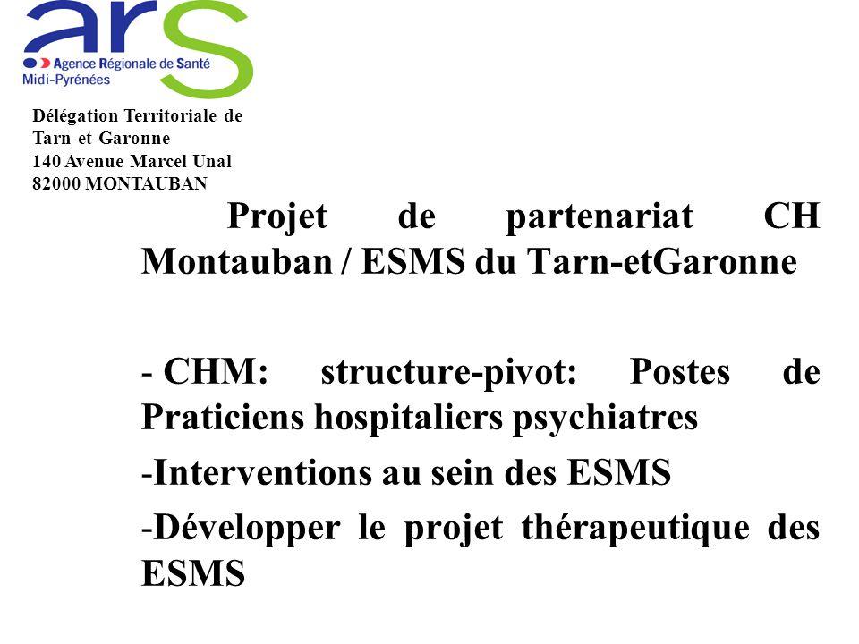Projet de partenariat CH Montauban / ESMS du Tarn-etGaronne