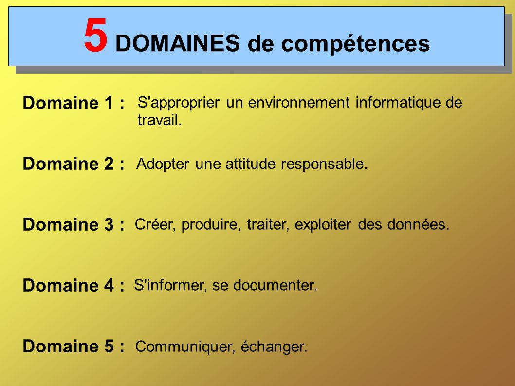 5 DOMAINES de compétences