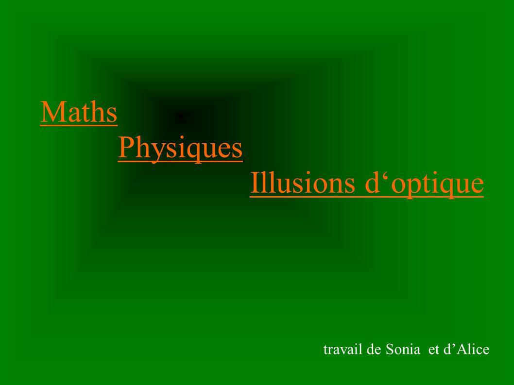 Maths Physiques Illusions d'optique travail de Sonia et d'Alice