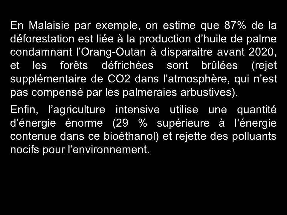 En Malaisie par exemple, on estime que 87% de la déforestation est liée à la production d'huile de palme condamnant l'Orang-Outan à disparaitre avant 2020, et les forêts défrichées sont brûlées (rejet supplémentaire de CO2 dans l'atmosphère, qui n'est pas compensé par les palmeraies arbustives).