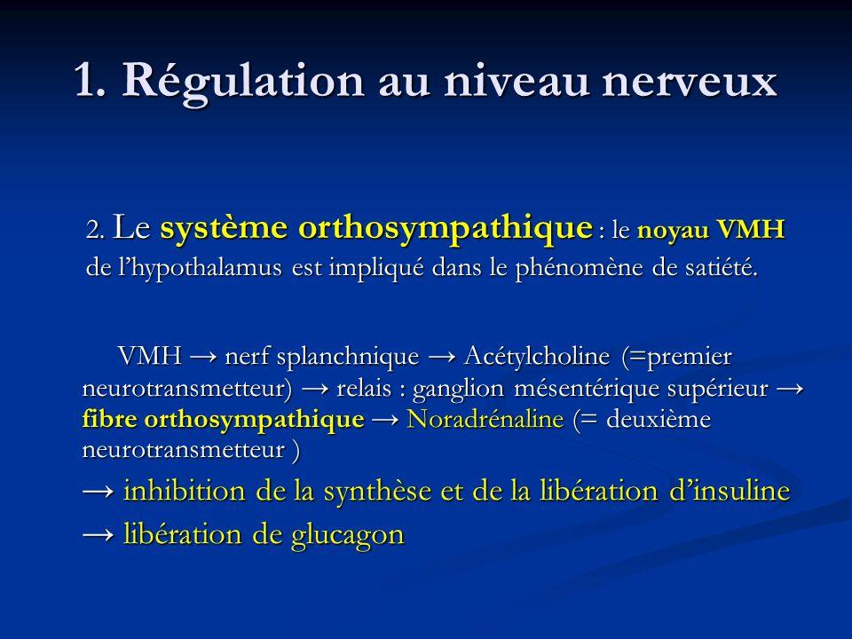 1. Régulation au niveau nerveux