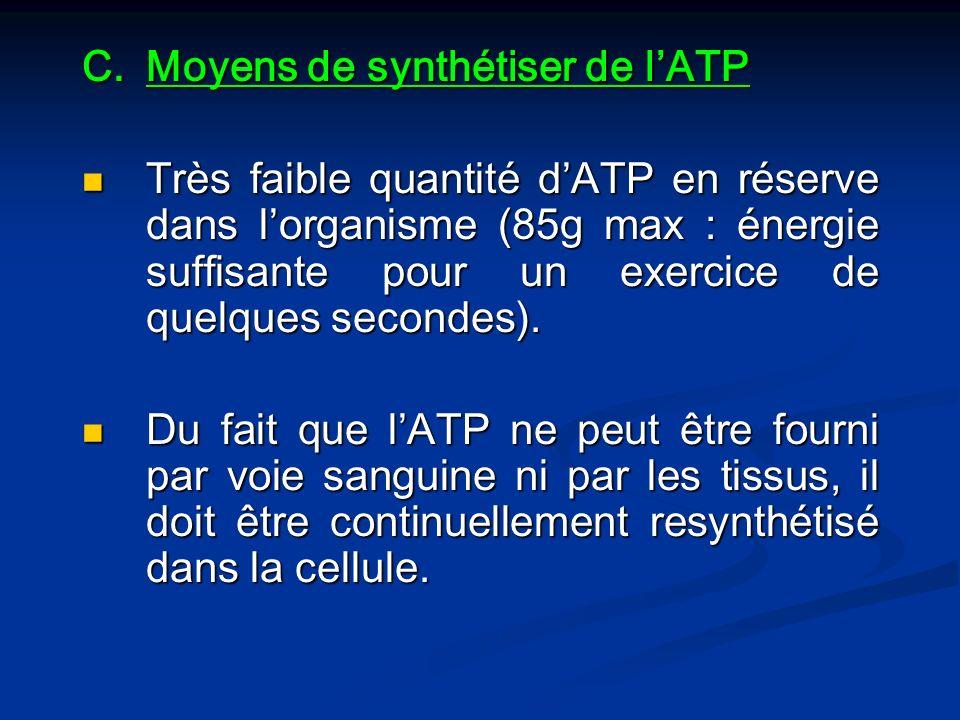 Moyens de synthétiser de l'ATP