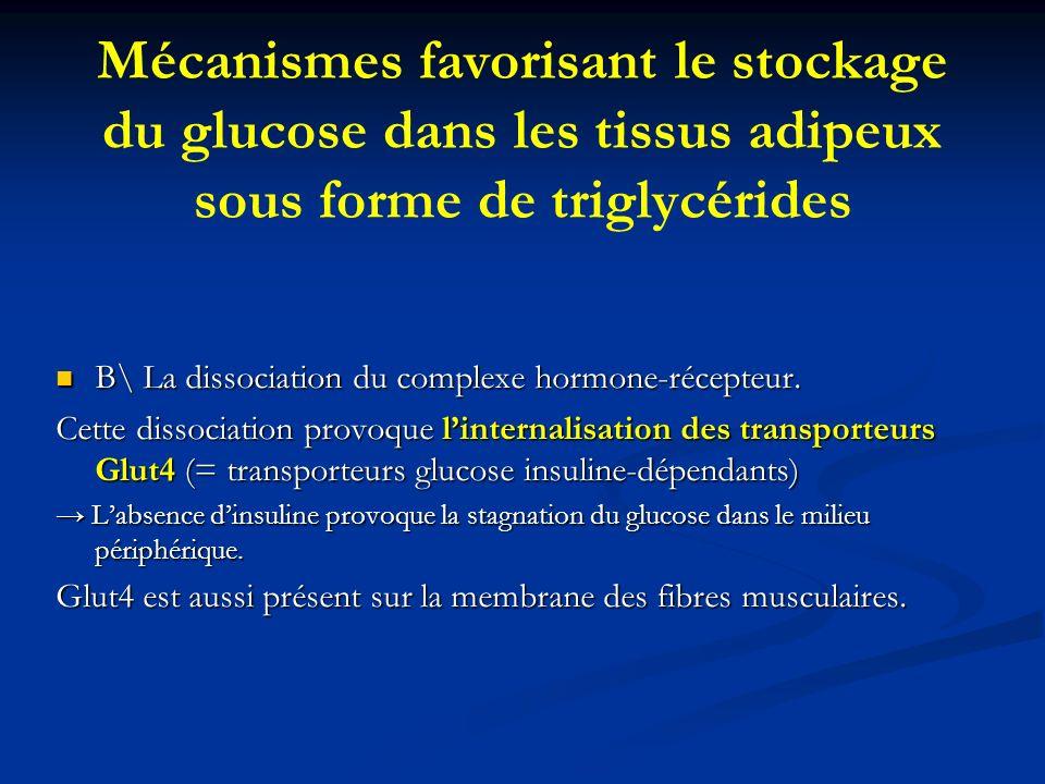 Mécanismes favorisant le stockage du glucose dans les tissus adipeux sous forme de triglycérides