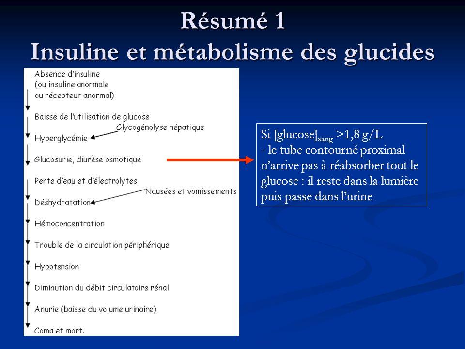 Résumé 1 Insuline et métabolisme des glucides
