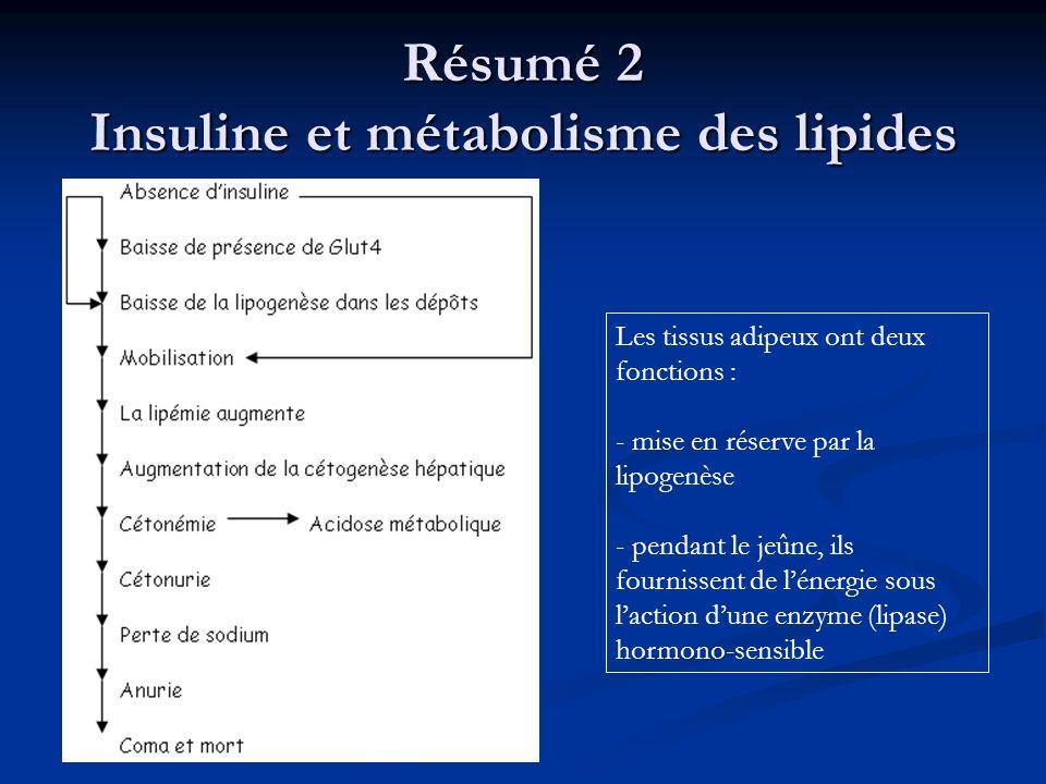 Résumé 2 Insuline et métabolisme des lipides