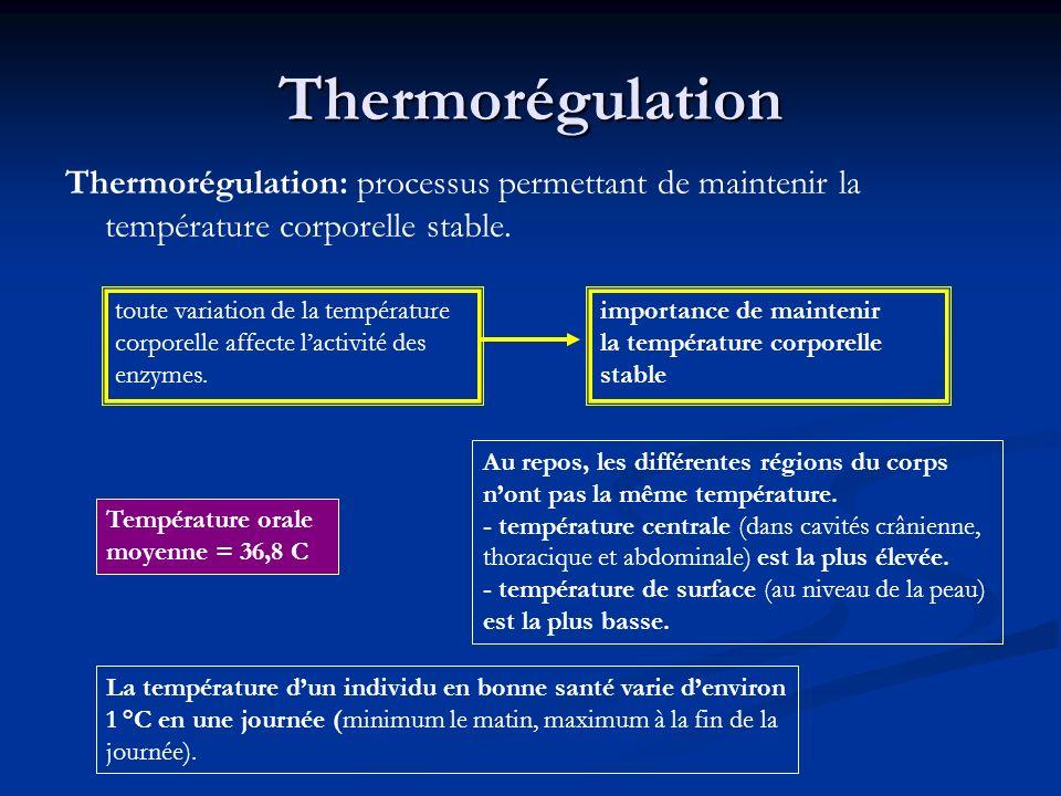 Thermorégulation Thermorégulation: processus permettant de maintenir la température corporelle stable.