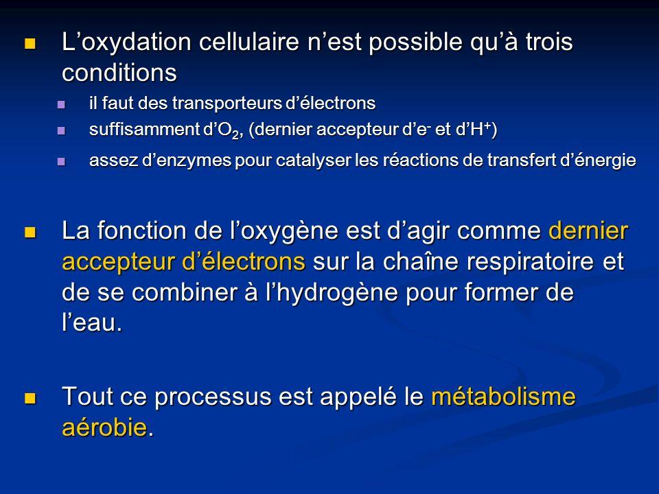 L'oxydation cellulaire n'est possible qu'à trois conditions