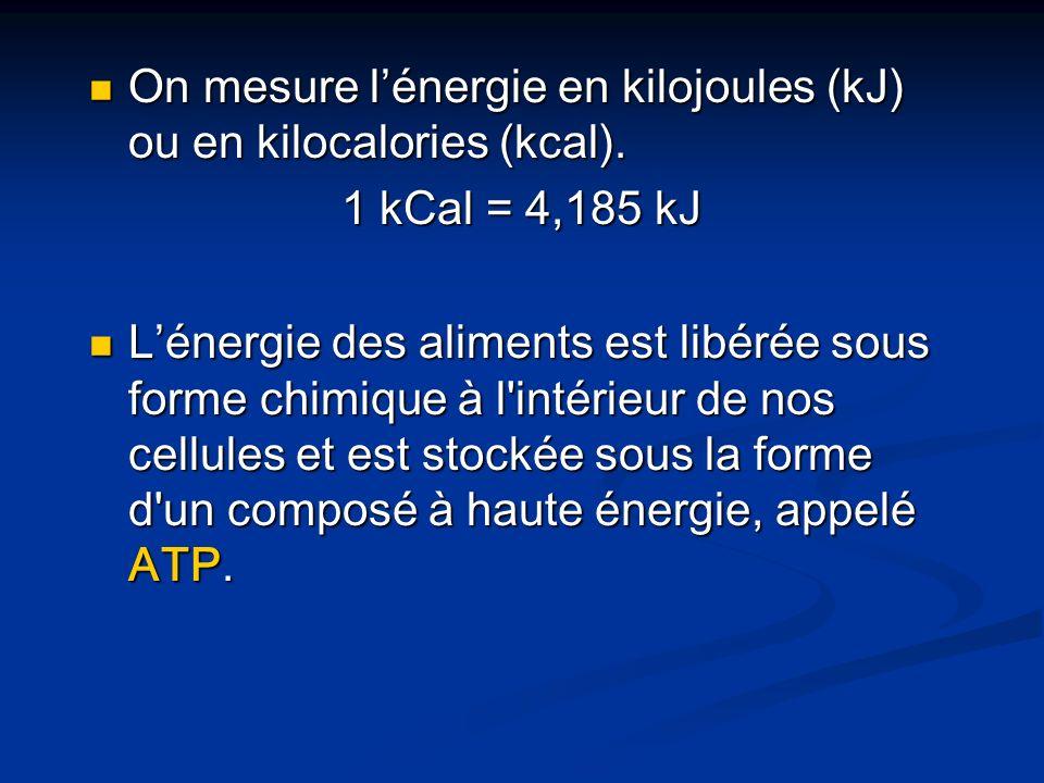 On mesure l'énergie en kilojoules (kJ) ou en kilocalories (kcal).