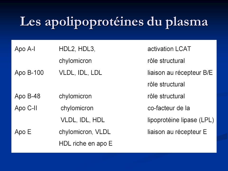 Les apolipoprotéines du plasma