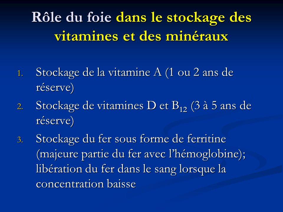 Rôle du foie dans le stockage des vitamines et des minéraux