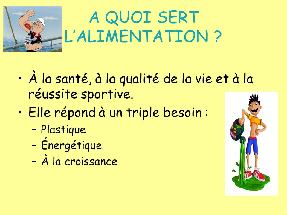 A QUOI SERT L'ALIMENTATION
