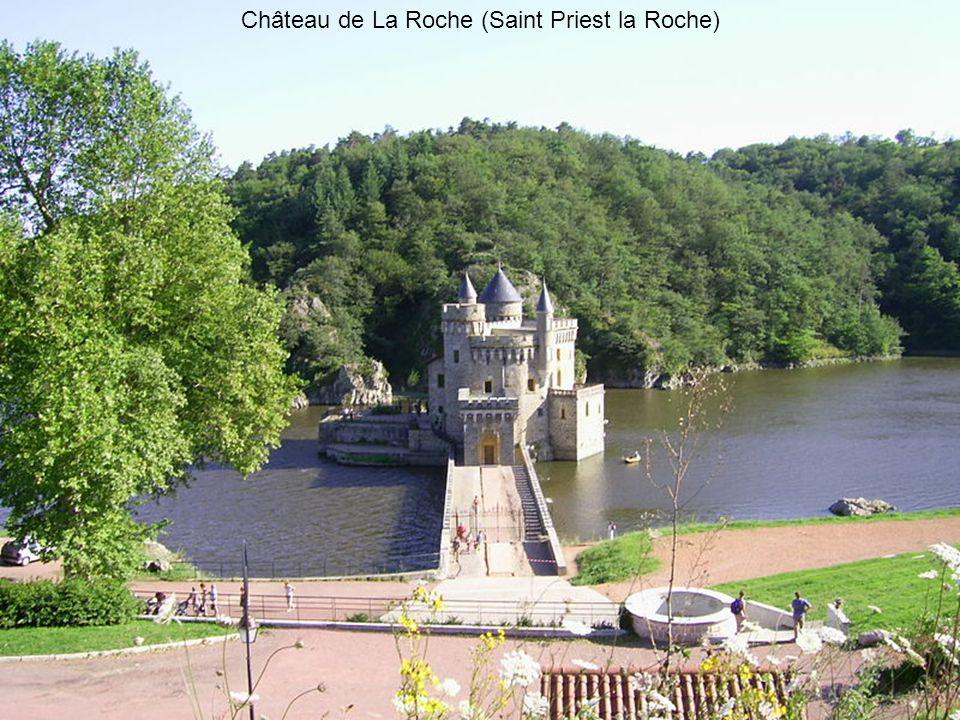 Château de La Roche (Saint Priest la Roche)