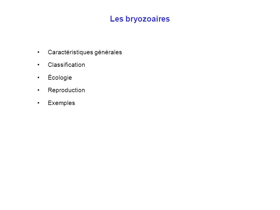 Les bryozoaires Caractéristiques générales Classification Écologie