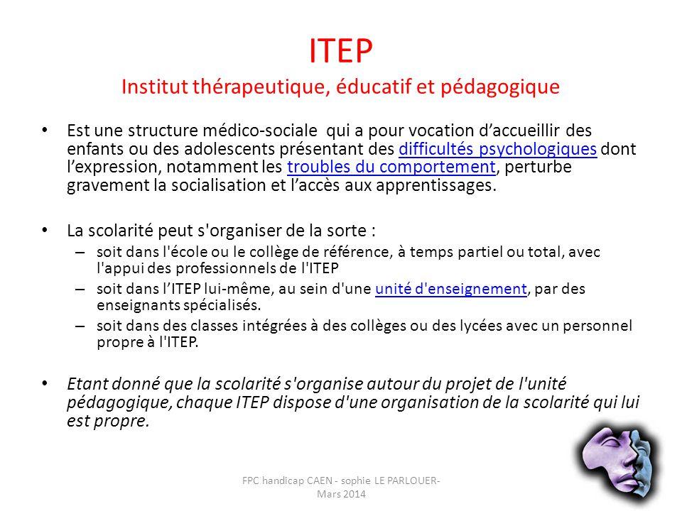 ITEP Institut thérapeutique, éducatif et pédagogique