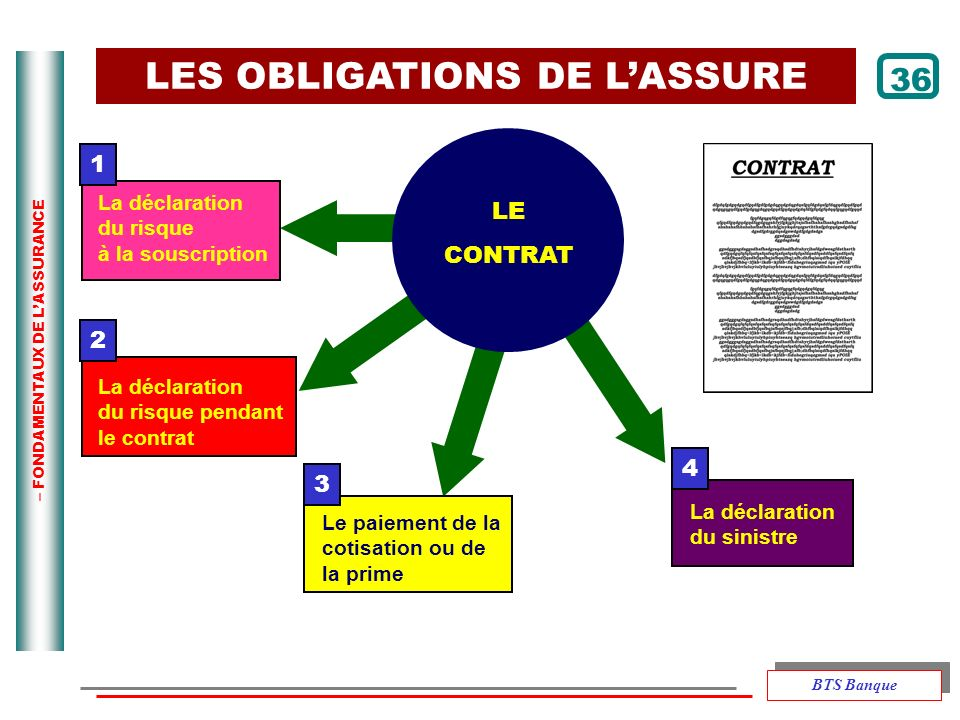 LES OBLIGATIONS DE L'ASSURE