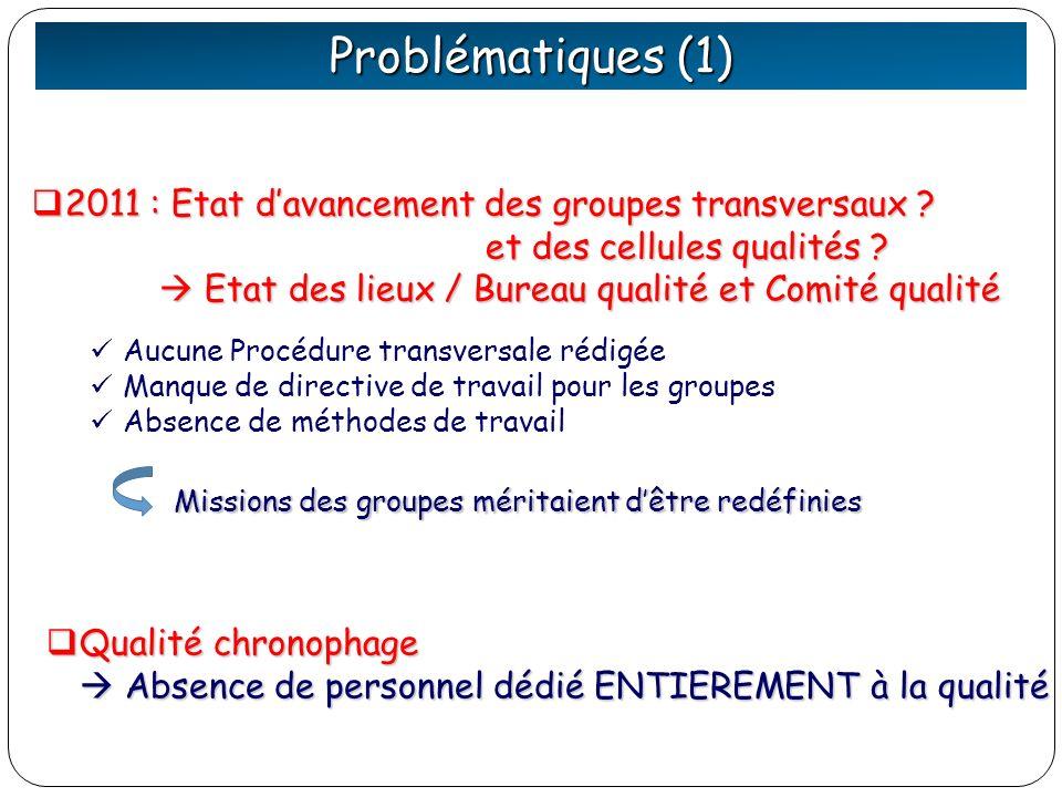 Problématiques (1) 2011 : Etat d'avancement des groupes transversaux