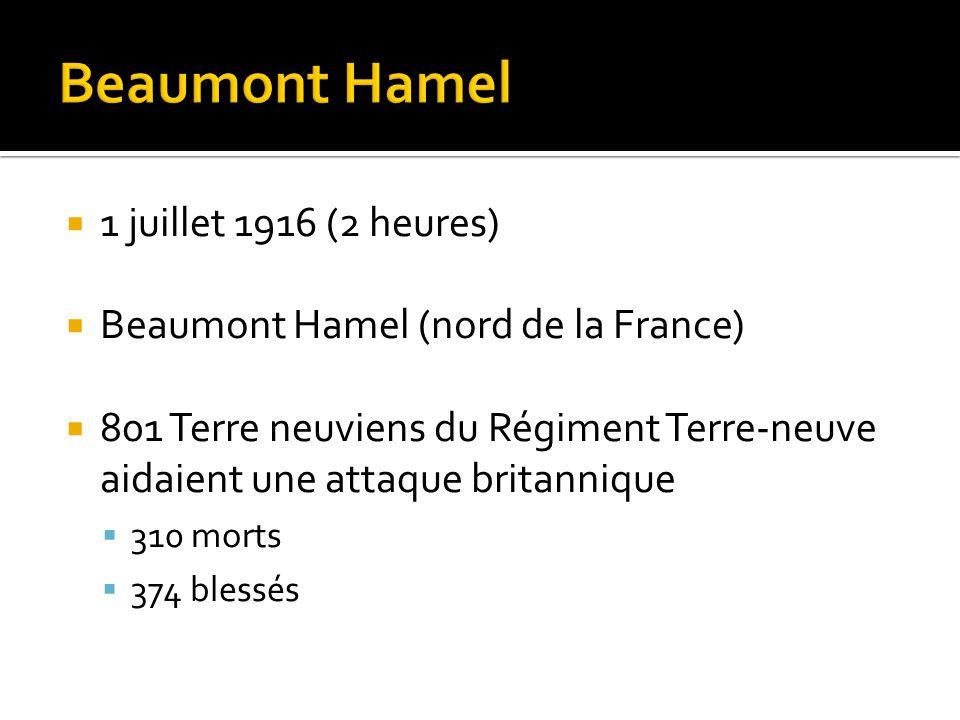 Beaumont Hamel 1 juillet 1916 (2 heures)
