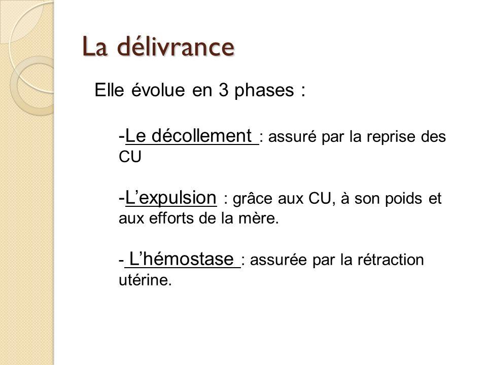 La délivrance Elle évolue en 3 phases :