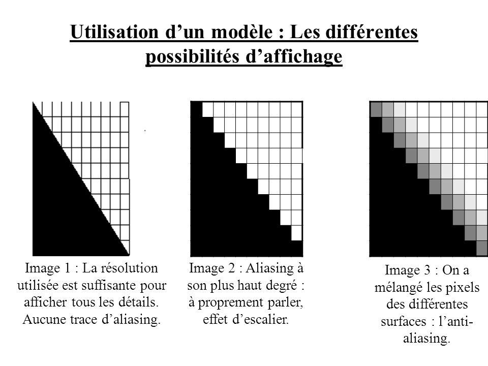 Utilisation d'un modèle : Les différentes possibilités d'affichage