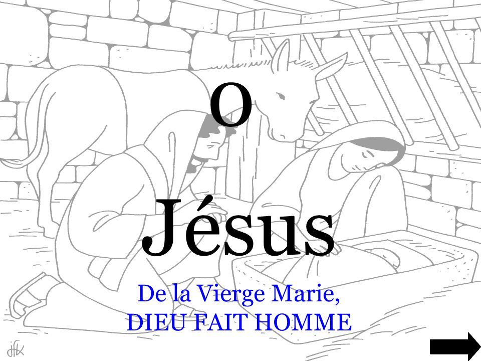 De la Vierge Marie, DIEU FAIT HOMME