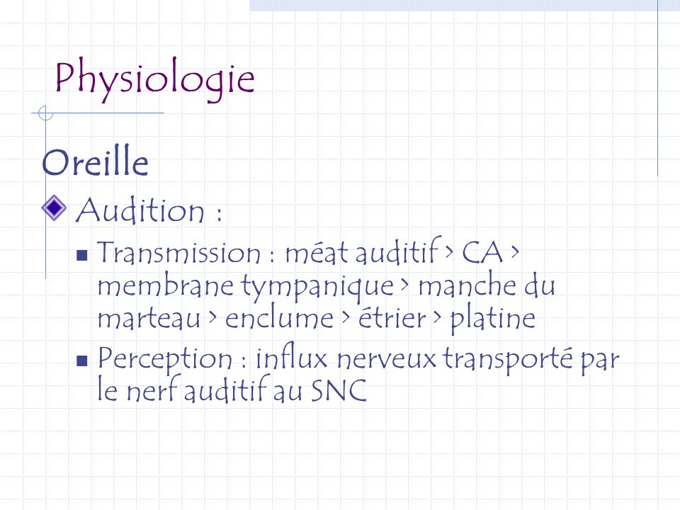Physiologie Oreille Audition :