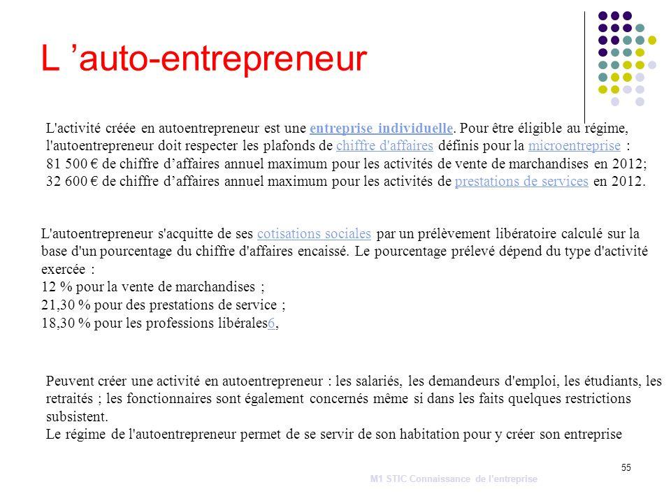 L 'auto-entrepreneur