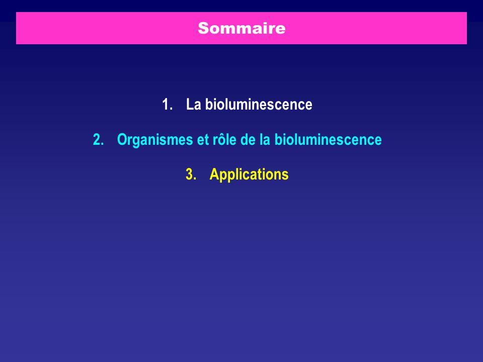 Organismes et rôle de la bioluminescence