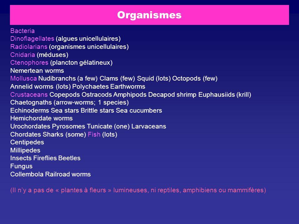 Organismes Bacteria Dinoflagellates (algues unicellulaires)