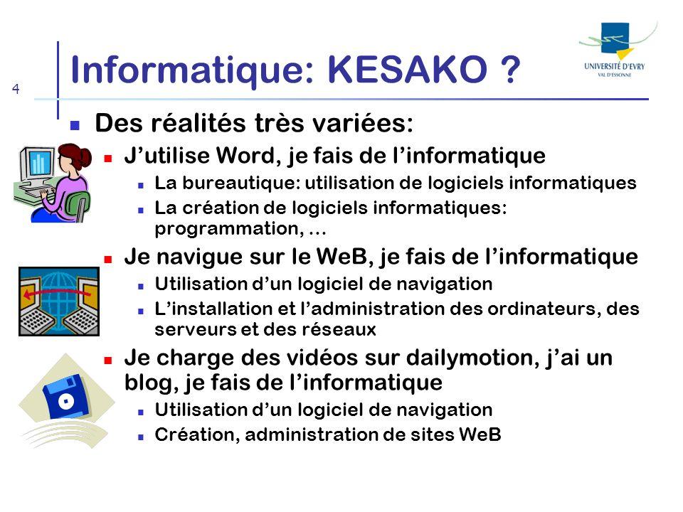 Informatique: KESAKO Des réalités très variées: