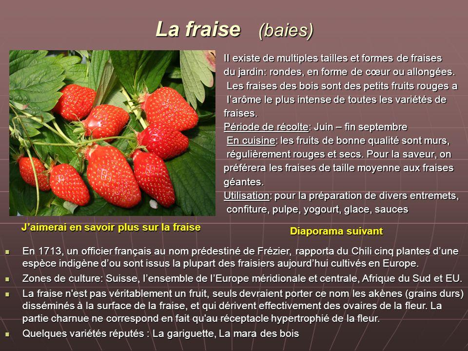 La fraise (baies) II existe de multiples tailles et formes de fraises