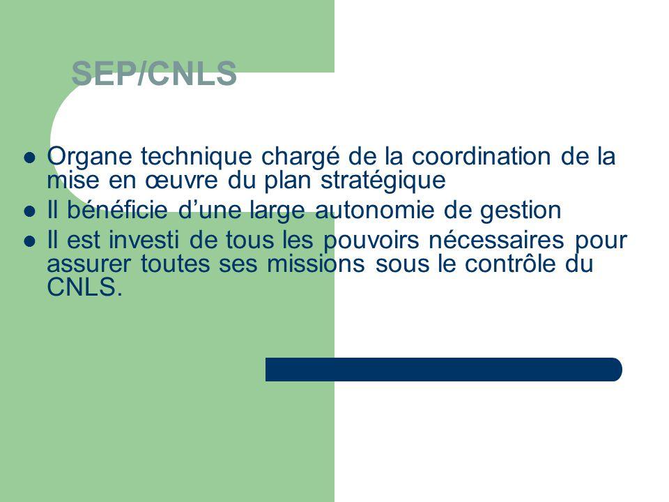 SEP/CNLS Organe technique chargé de la coordination de la mise en œuvre du plan stratégique. Il bénéficie d'une large autonomie de gestion.