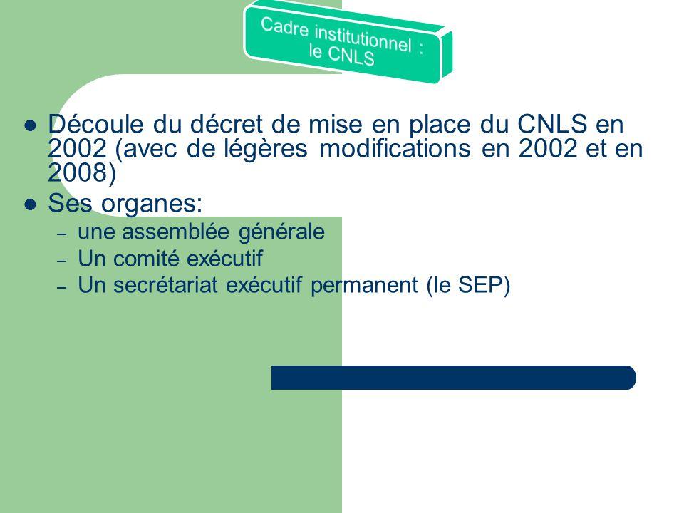 Cadre institutionnel : le CNLS