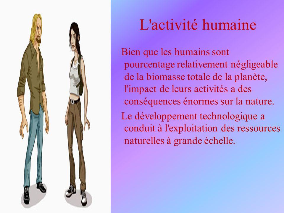 L activité humaine