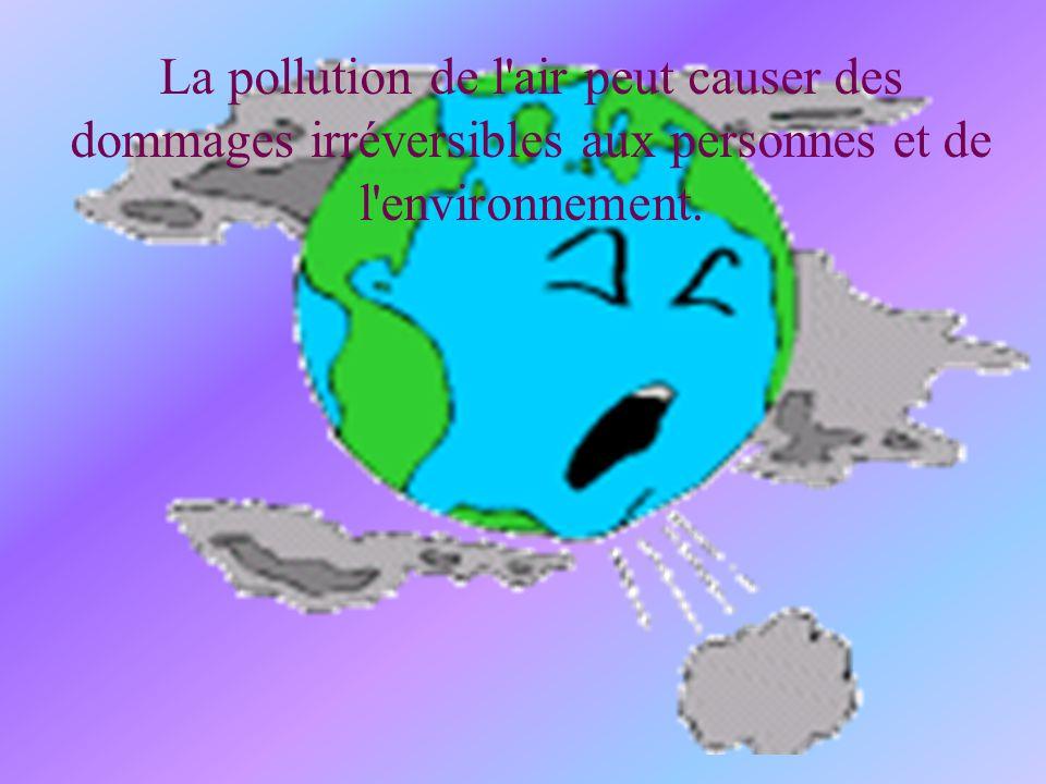 La pollution de l air peut causer des dommages irréversibles aux personnes et de l environnement.