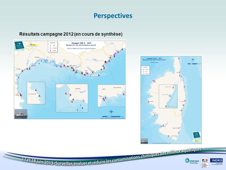 Perspectives Résultats campagne 2012 (en cours de synthèse)