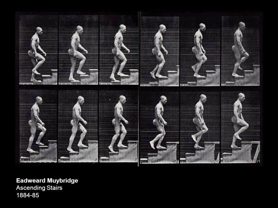 Eadweard Muybridge Ascending Stairs 1884-85