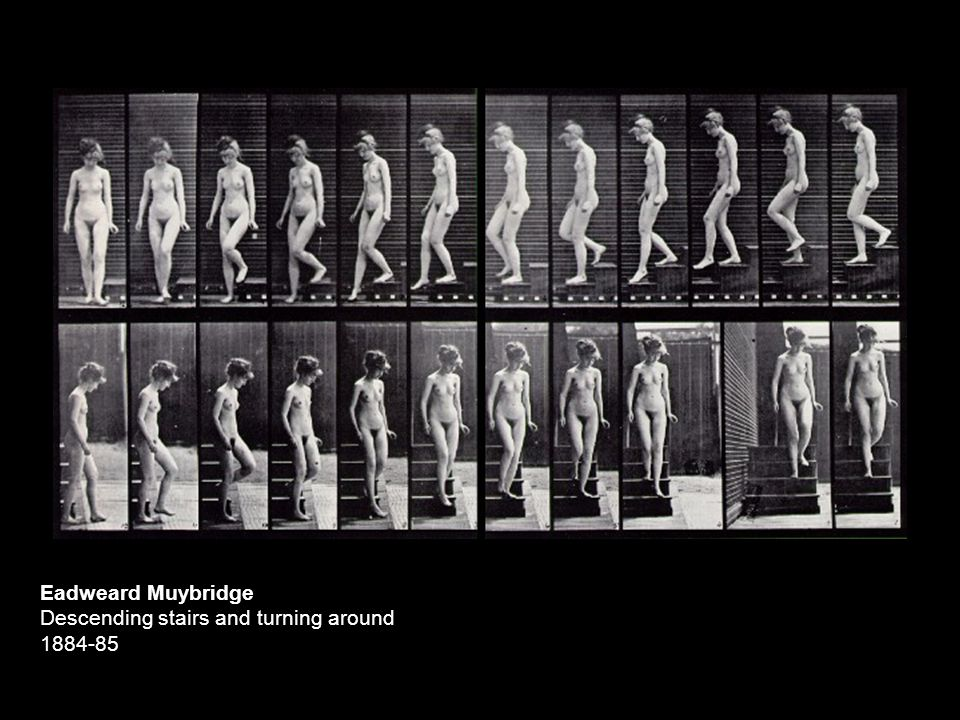 Eadweard Muybridge Descending stairs and turning around 1884-85