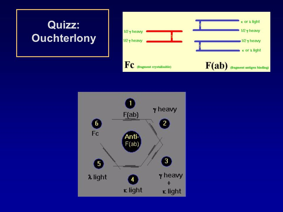 Quizz: Ouchterlony