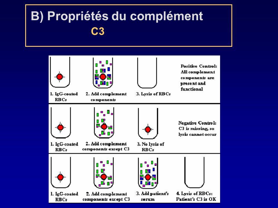 B) Propriétés du complément