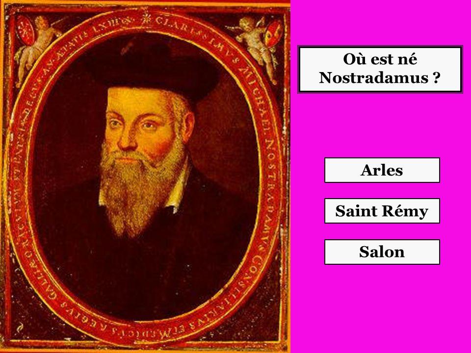 Où est né Nostradamus Arles Saint Rémy Salon