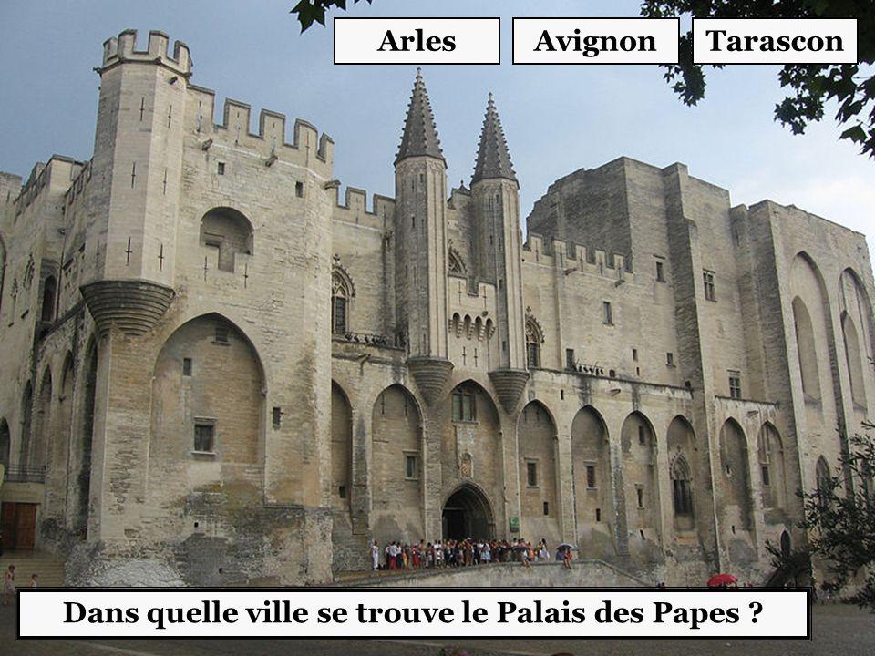 Dans quelle ville se trouve le Palais des Papes