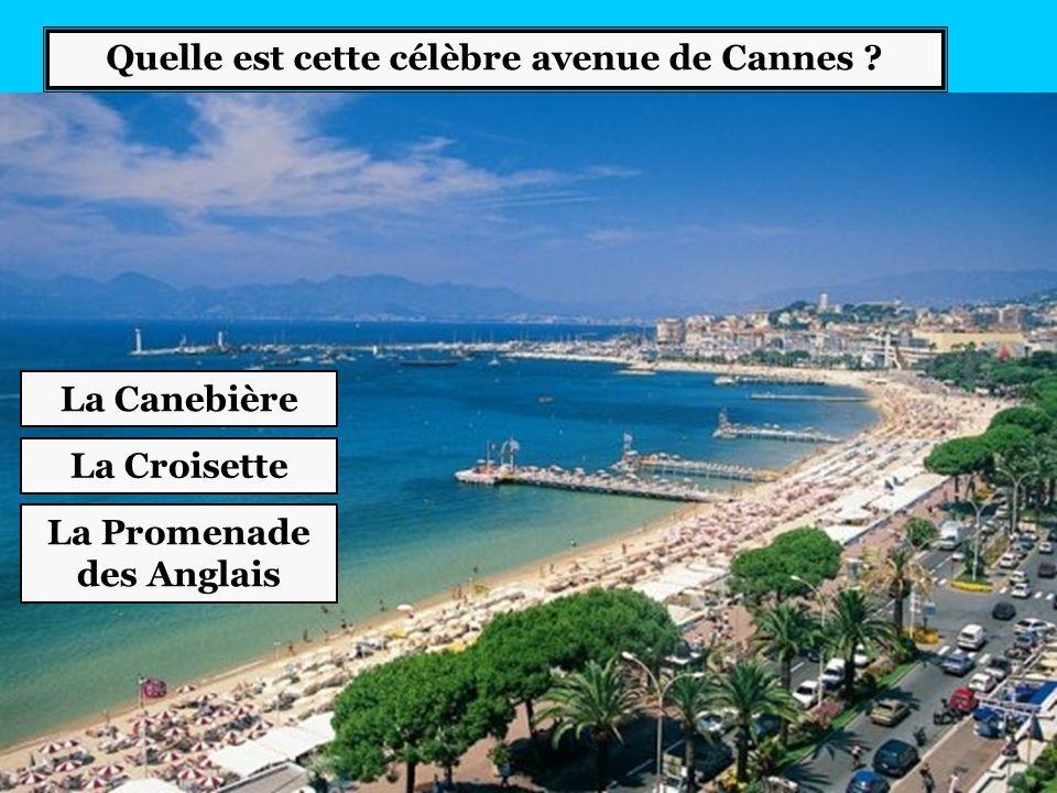 Quelle est cette célèbre avenue de Cannes La Promenade des Anglais