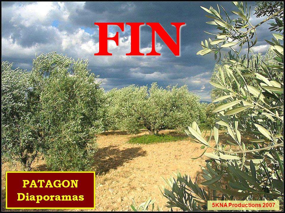 FIN 5KNA Productions 2007