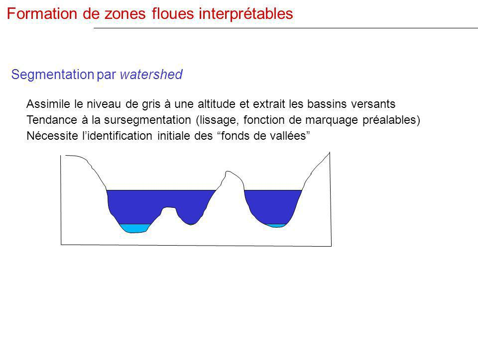 Formation de zones floues interprétables
